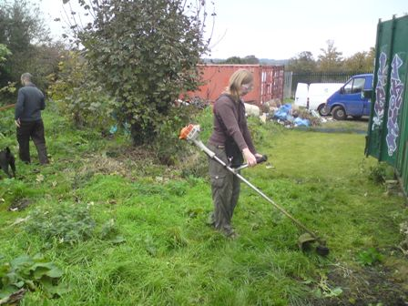 Clearing the tree nursery