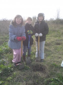 Maria, Donna and Amy Tree Planting